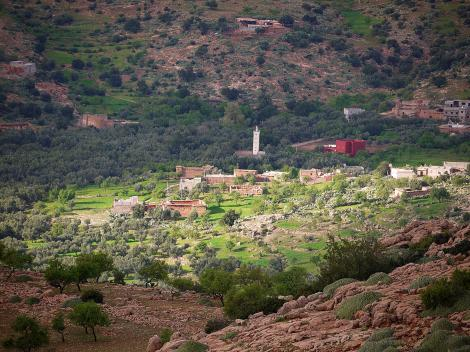 Mosque and a village.