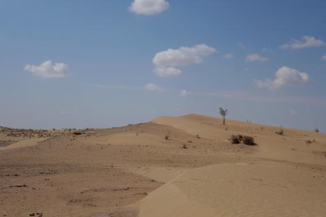 Dunes. Karakum Desert.